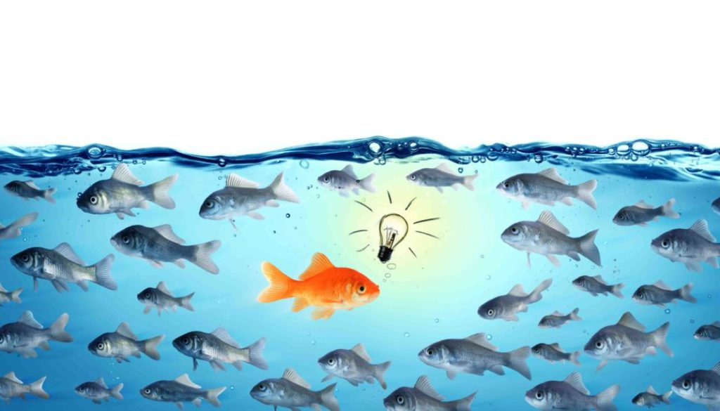 fish thought leadership s